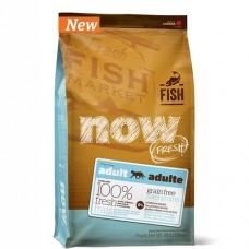 NOW NATURAL беззерновой корм для взрослых кошек с форелью и лососем для чувствительного пищеварения