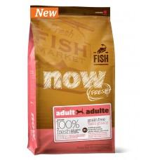 NOW Natural holistic беззерновой корм для взрослых собак с форелью и лососем для чувствительного пищеварения