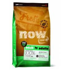 NOW Natural holistic беззерновой для взрослых собак малых пород со свежим ягненком и овощами