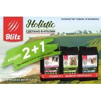 Blitz Holistic: 2+1